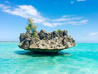 Island Tours in Mauritius